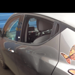 Paintless Dent Removal - Before - Three